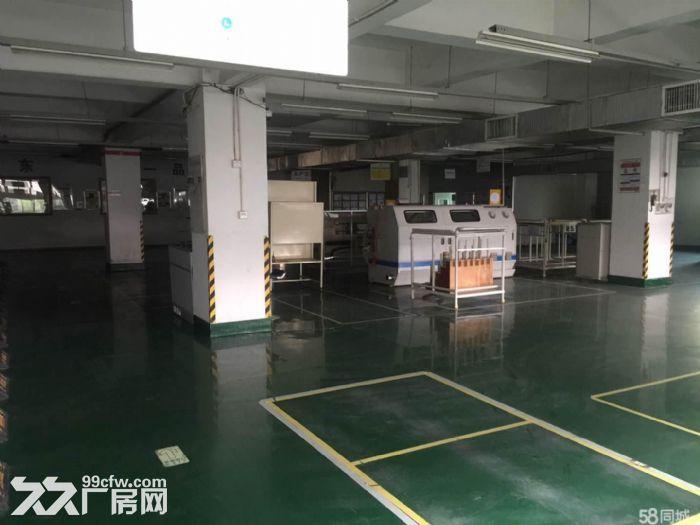 业主特优价租售1130自贸区厂房/办公室-图(1)
