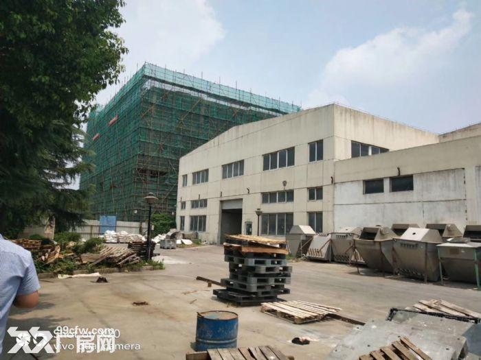 无中介费吴中城南南湖路独门独院单层层高十米可分租-图(4)