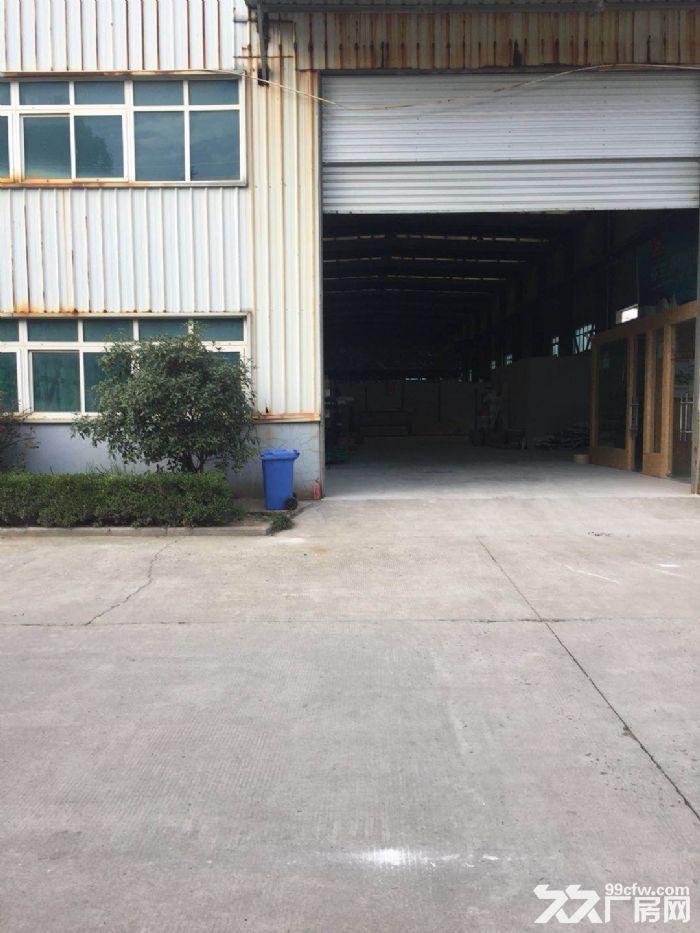 鸿大路大仓库出租面积不限-图(3)