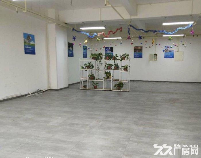 电子三路西京电气生产336平377平便宜出租-图(7)
