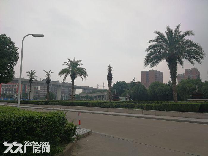 镇海经济开发区出入口2楼厂房出租-图(6)