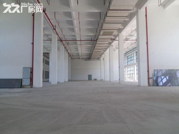 可环评!张江药谷650平1600平生物医药化学实验-图(2)
