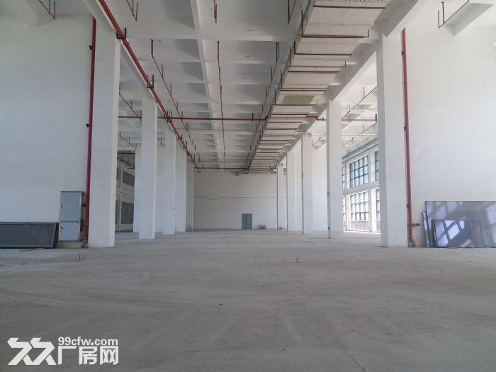 可环评!张江药谷650平1600平生物医药化学实验-图(5)