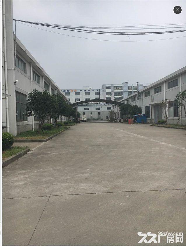 青浦区崧华路4000独门独院厂房单层火爆出租-图(4)