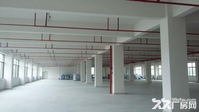 红旗联港工业区一楼2800平方厂房招租-图(1)
