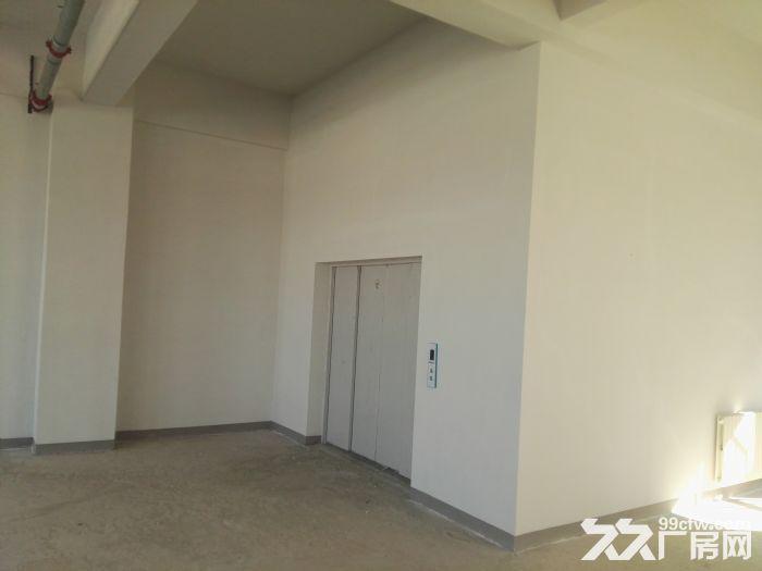 [大兴]六环附近亦庄经济开发区全新厂房出租出售-图(4)