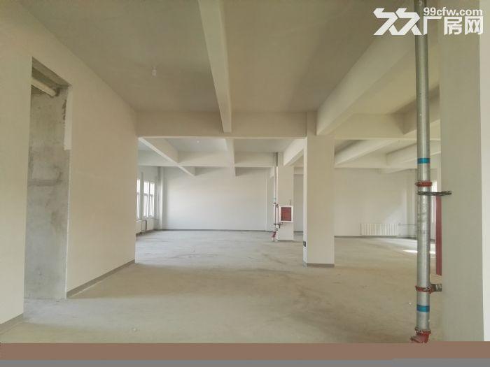 [大兴]六环附近亦庄经济开发区全新厂房出租出售-图(5)