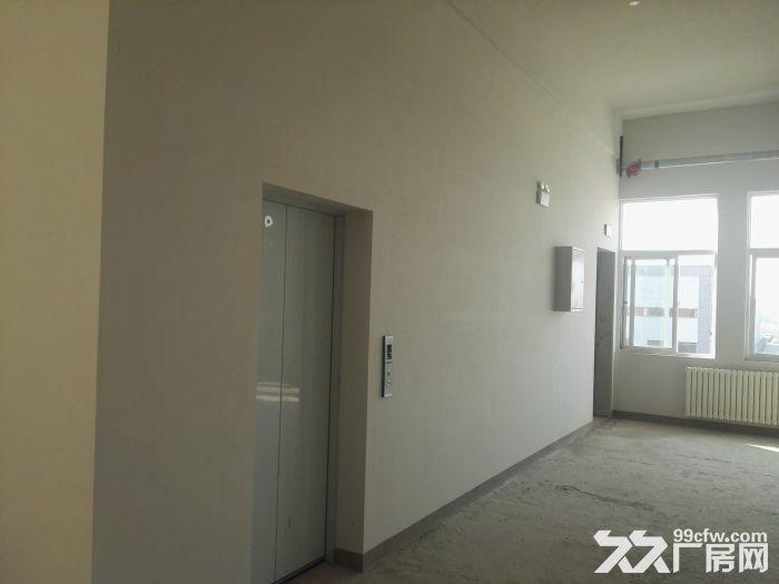 [大兴]六环附近亦庄经济开发区全新厂房出租出售-图(7)