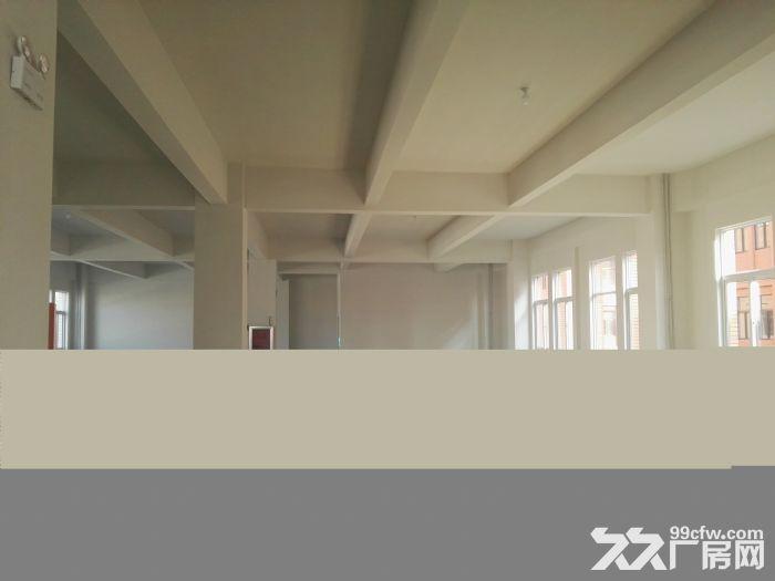 [大兴]六环附近亦庄经济开发区全新厂房出租出售-图(8)