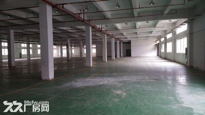 (最新)苏州园区独院7300平米精装好厂房出租中-图(2)