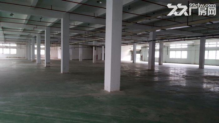 (最新)苏州园区独院7300平米精装好厂房出租中-图(3)