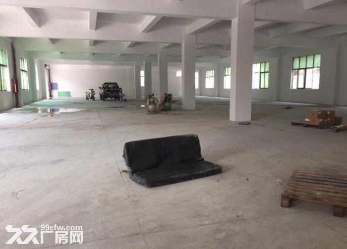 独院全新2300平两层厂房出租包办环评-图(3)