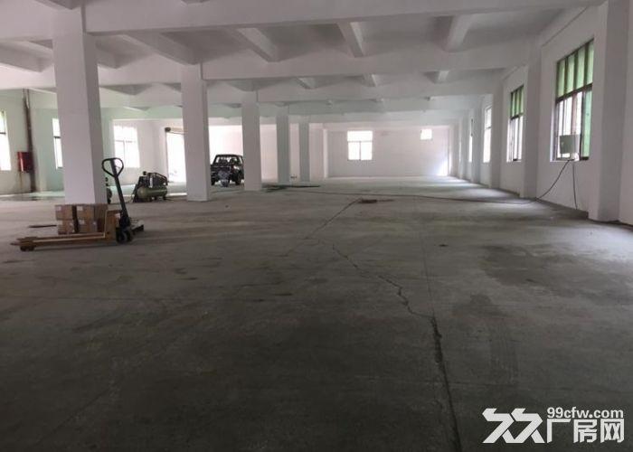 独院全新2300平两层厂房出租包办环评-图(4)