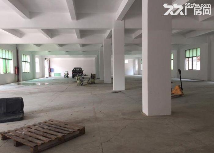 独院全新2300平两层厂房出租包办环评-图(5)