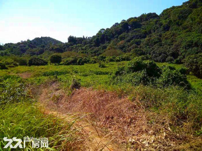 从化区太平镇1200亩山地果园平地古村落转让-图(2)