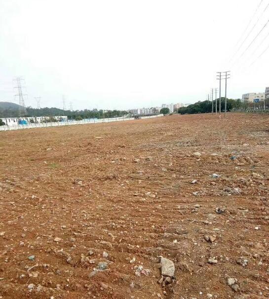 企石镇现有101亩国有工业土地出售二手工业地无行业要求无税收要求-图(2)