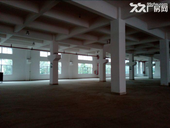 南屏科技园3400平方4~5楼厂房出租-图(2)