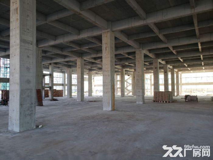 东升全新楼层结构高规格厂房出租,共50000(层高够,电够,电梯够)适合各类行业-图(7)