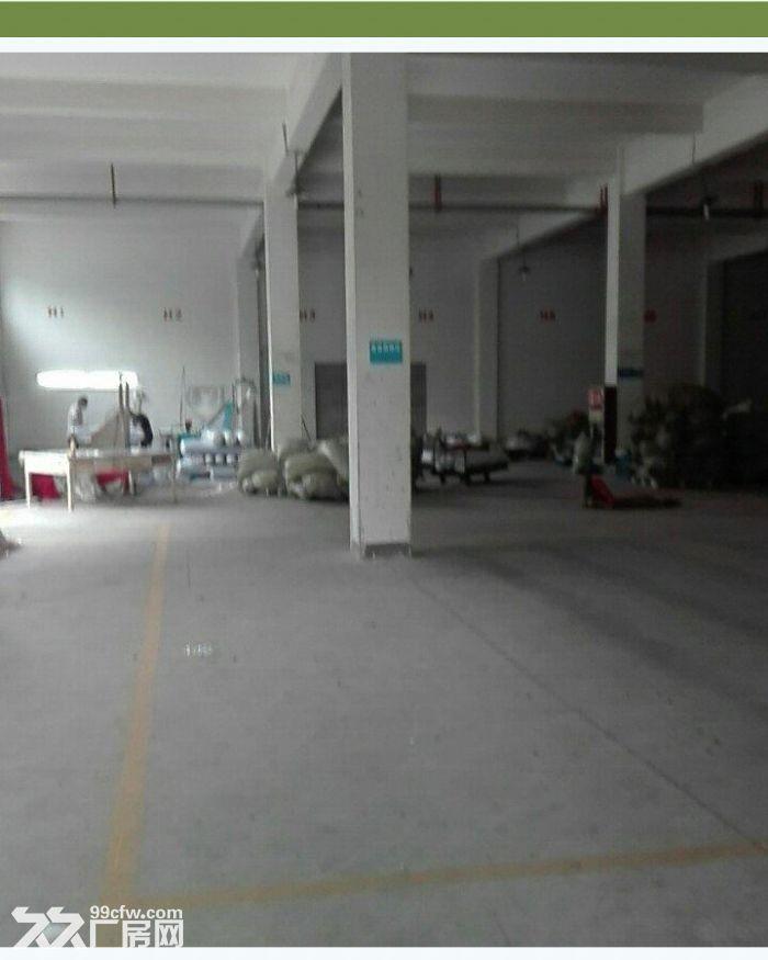 洪塘工业区1−4楼优质厂房出租(本人专做厂房出租)-图(5)