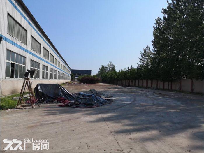 天津正规工业园区库房出租33000平米-图(4)