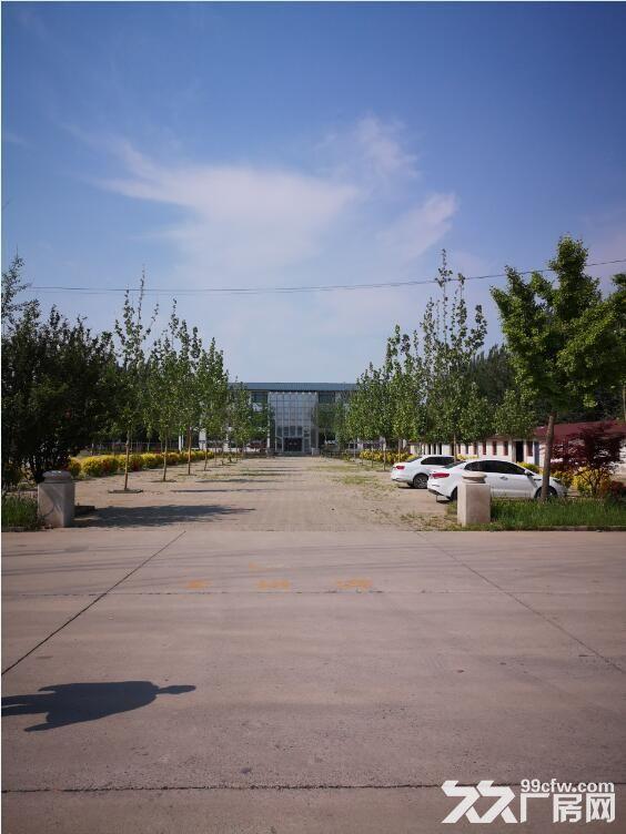 天津正规工业园区库房出租33000平米-图(6)