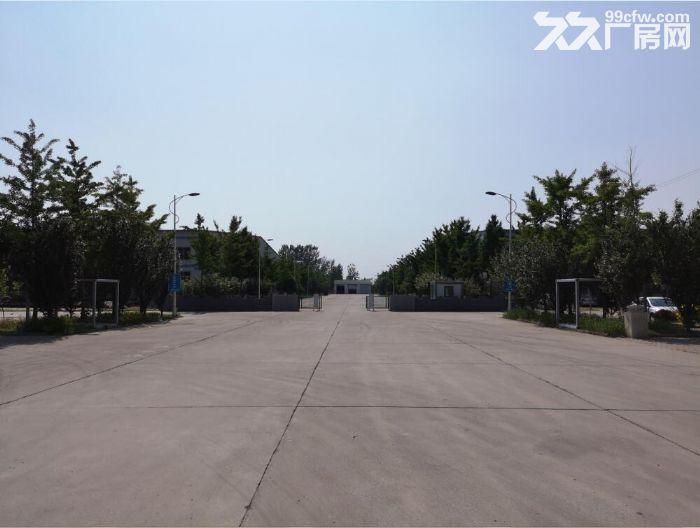 天津正规工业园区库房出租33000平米-图(8)