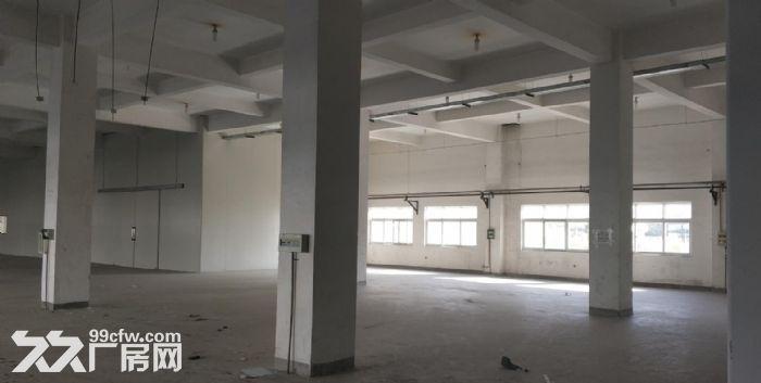 天津西青华苑12000平米厂房/库房出租-图(3)