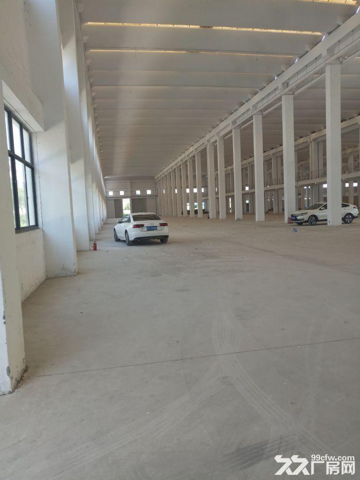 独门独院滨湖区15000平米单层厂房~~30吨行车-图(4)