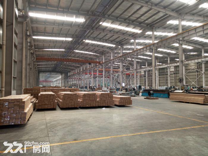 独门独院滨湖区15000平米单层厂房~~30吨行车-图(5)
