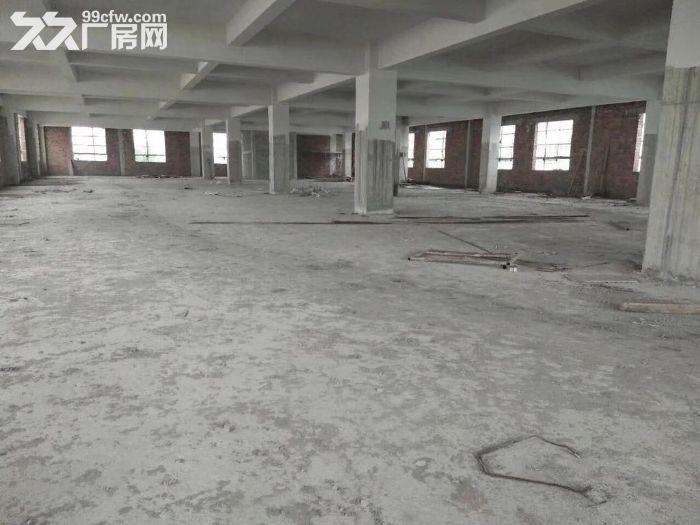 横栏工业区全新厂房出租-图(2)
