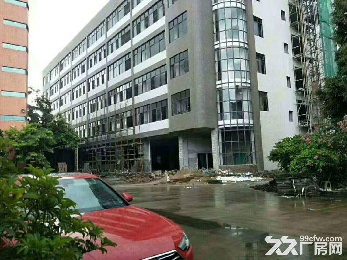 横栏工业区新厂房出租-图(1)