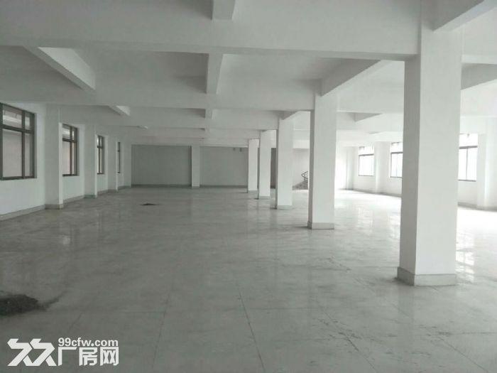 横栏工业区新厂房出租-图(2)