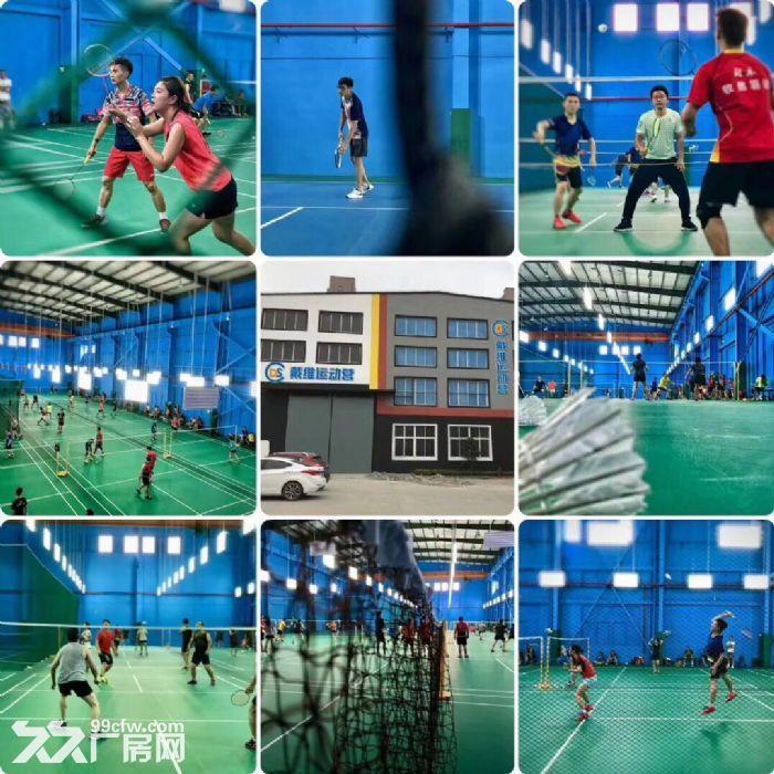 电影拍摄电子竞技俱乐部1244平-图(3)