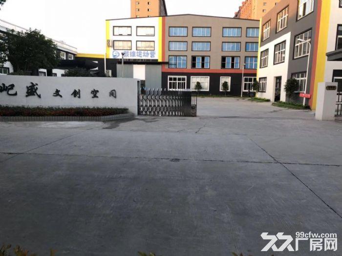 电影拍摄电子竞技俱乐部1244平-图(5)