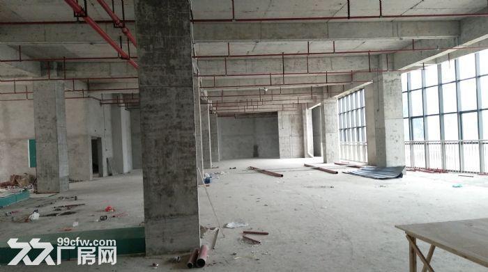 洛维工业园祥兴科技办公楼出租-图(3)