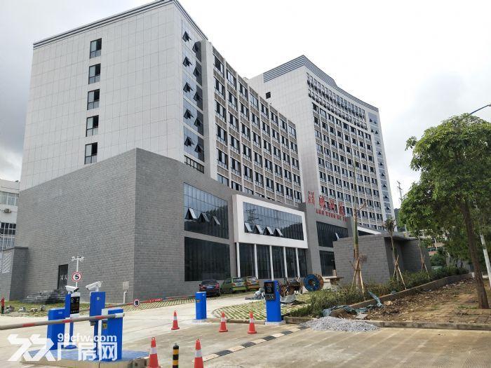 洛维工业园祥兴科技办公楼出租-图(4)