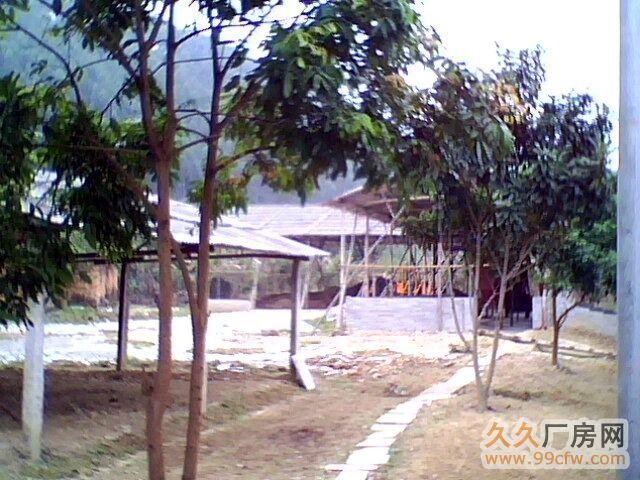 腰古圩镇附近旧厂房空地招租/转让-图(1)
