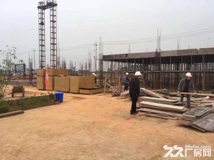 出售眉山丹棱高品质厂房,无税收要求无行业限制-图(3)