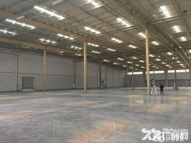 空港园区9000平厂房仓库高15米电500kva面积可分-图(4)