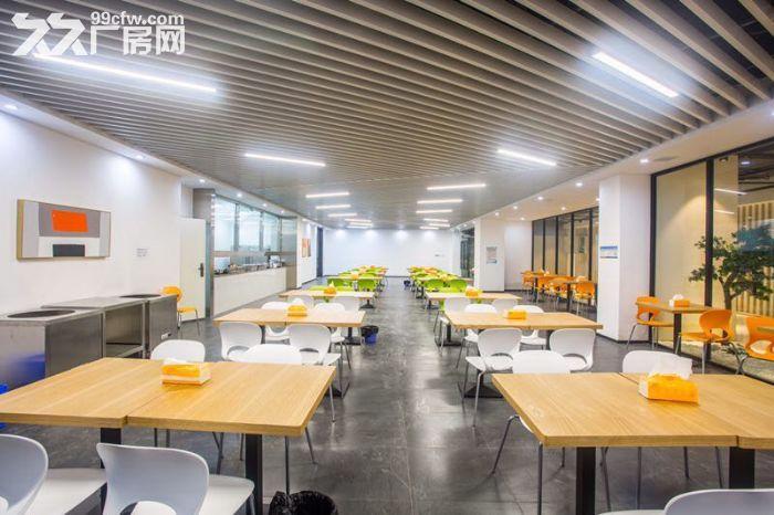 北京压力大,想回重庆的企业看过来,带政策标准框架厂房,办公一体-图(7)