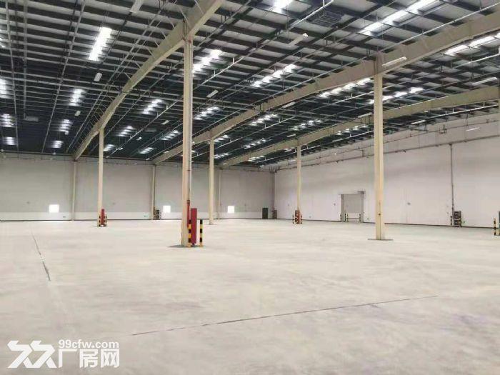 出租芜湖80000平米高标仓库图片