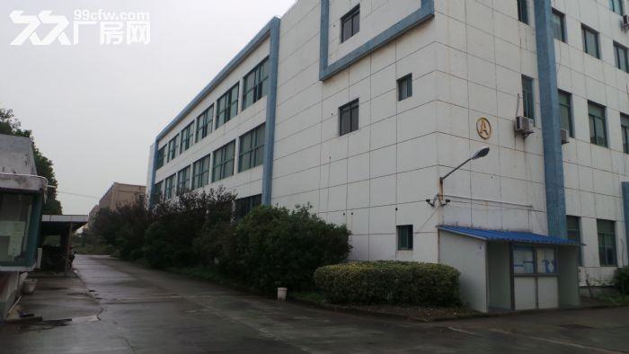绿证!50年产权三栋、三层厂房出租出售-图(2)
