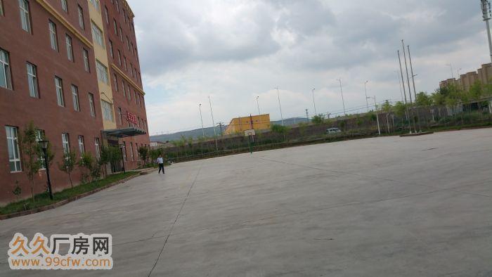 乌鲁木齐经济技术开发区全新写字楼出租1620平方-图(1)