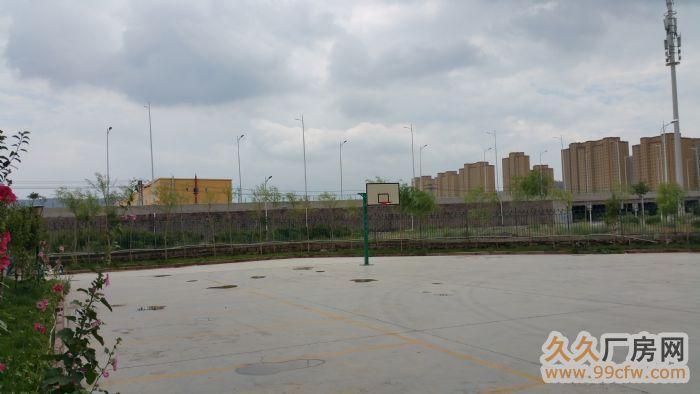乌鲁木齐经济技术开发区全新写字楼出租1620平方-图(3)