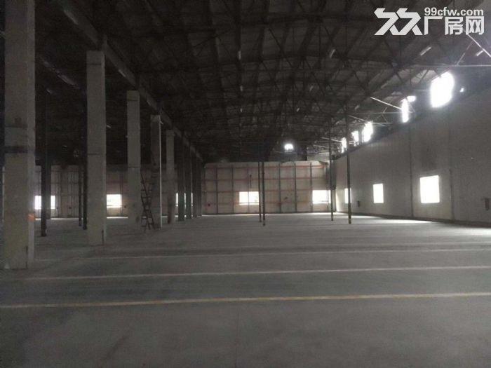空地大有卸货平台8米高单一层钢构物流仓库出租-图(4)