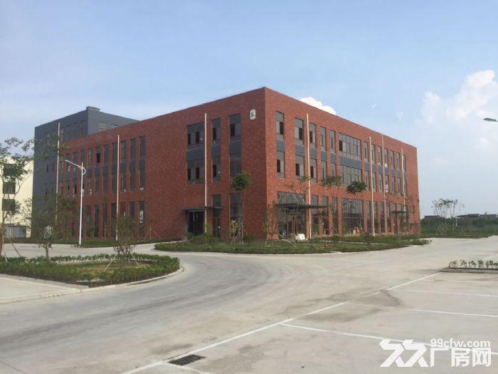 【非中介】全新独栋标准厂房!独立产权,小产证!可按揭-图(2)