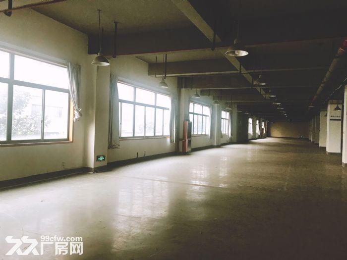拱墅区工业园区康惠路-图(3)