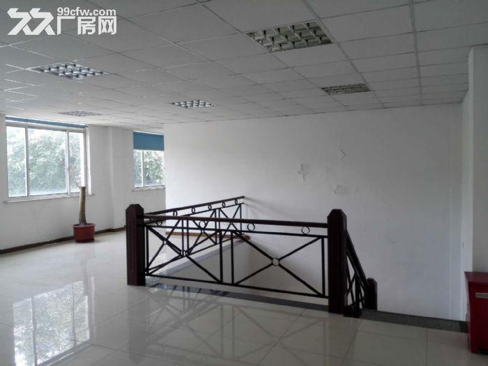 金都西路3800平方独门独院单层厂房出租(可分割)-图(3)