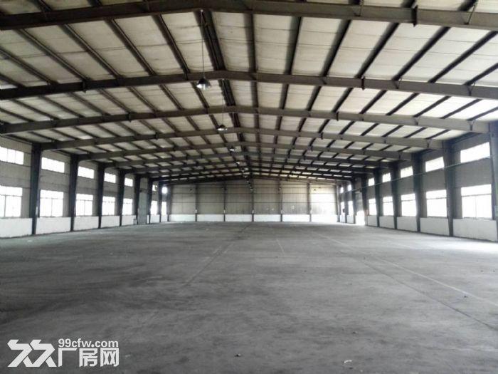 金都西路3800平方独门独院单层厂房出租(可分割)-图(7)