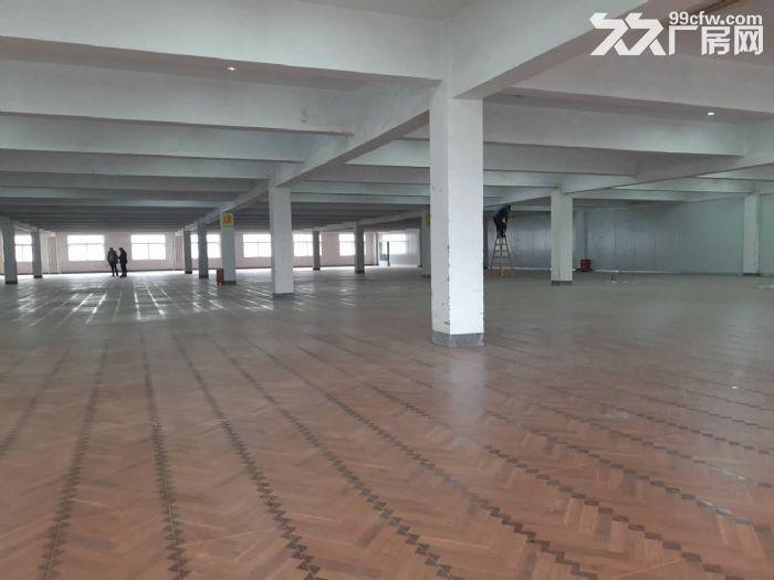 萧山区钱江农场附近可做仓库淘宝看过来无税收要求600方起分割-图(1)